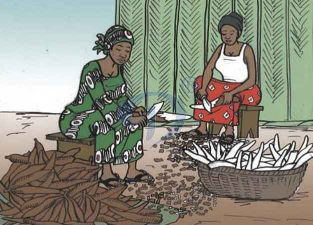 the old way of cutting cassava