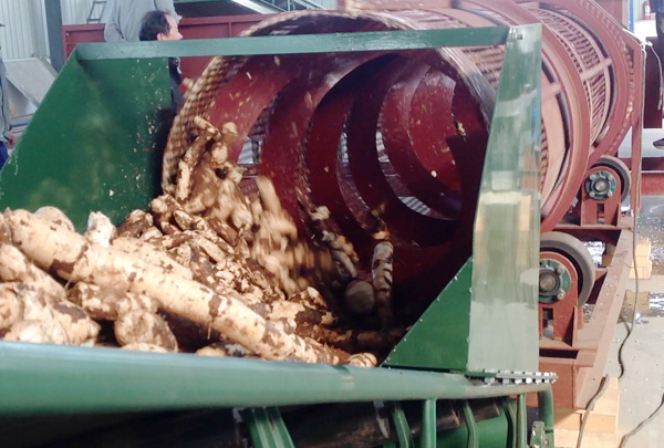 When selecting the cassava processing machine,you must understand these before the inquiry