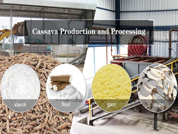 Cassava processing methods