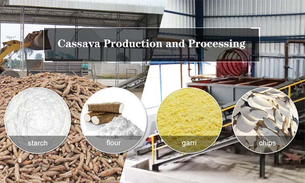 cassava production machines